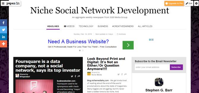 Niche Social Network Development.png
