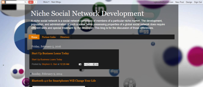 Niche Social Network Development